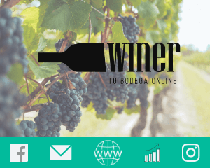 Proyecto Empower Marketing - Winer - Tu Bodega Online